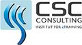 CSC Consulting GmbH INSTITUT FÜR eTRAINING